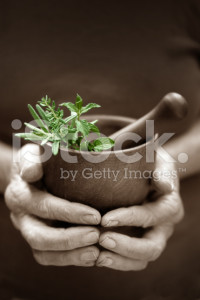 stock-photo-10728932-alternative-herbs